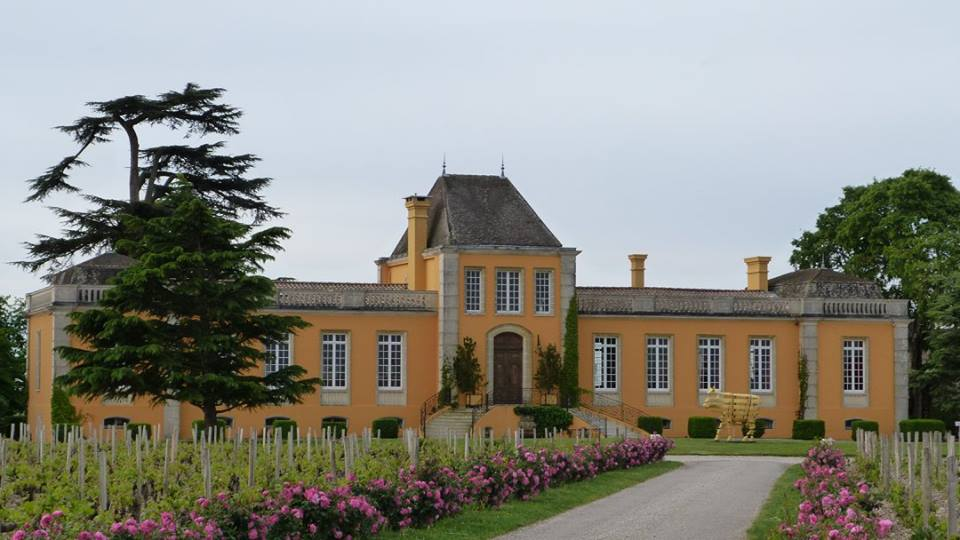 The Château Lafon Rochet sees its future in large scale and organic !